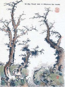YaoTingmei1