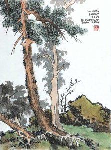 ZhaoYong